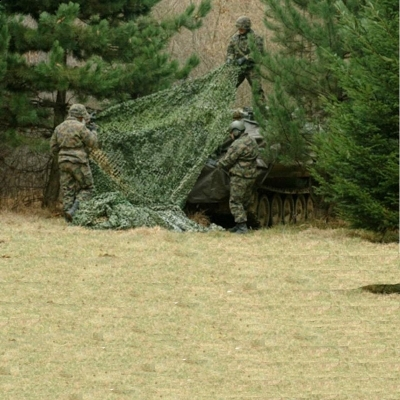 Forest Camouflage Net 10x10m